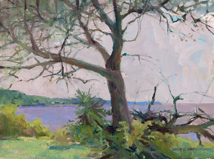 Tree Study Near East Point, 12x16, oil