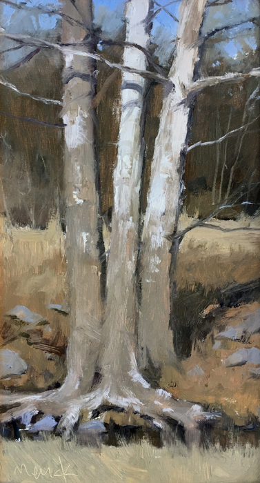 SOLD Creek Sycamores, 10x18, oil