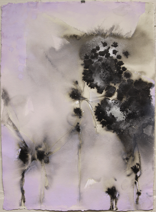 SOLD - Color me Quiet I, 30x22, ink, acrylic, powdered graphite on cotton rag