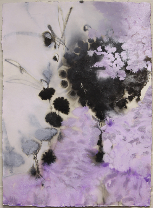 SOLD - Color me Quiet III, 30x22, ink, acrylic, powdered graphite on cotton rag