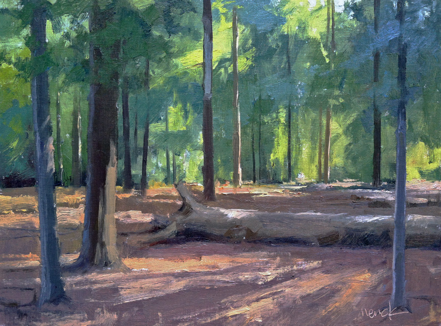 Light in the Woods, 12x16, oil